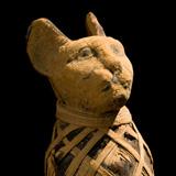 Мумифицирана котка - символ на бога на слънцето Ра